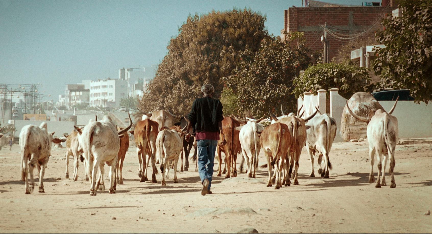 Image tirée du film Mille Soleils de Mati Diop